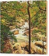Fall River Running Wood Print