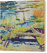 Fall River Scene Wood Print
