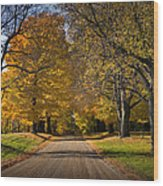 Fall Rural Country Gravel Road Wood Print