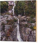 Fall Rush Wood Print