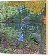 Fall Scene By Pond Wood Print