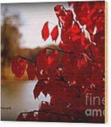 Fall Scenery Wood Print