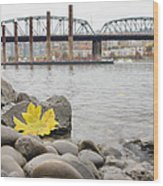 Fall Season Along Portland Willamette River By Marina Wood Print