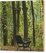 Fall Seating  Wood Print