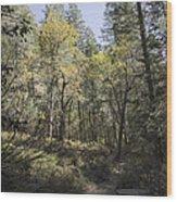 Fall Splender Wood Print