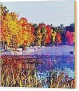 Fall Splendor Of Mid-michigan Wood Print