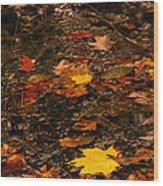 Fall Stream Bed Wood Print