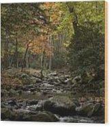 Fall Stream Cades Cove Gsmnp Wood Print