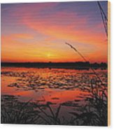 Fall Sunset In The Mead Wildlife Area Wood Print