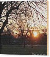 Fall Sunset Tree Silhouettes Wood Print