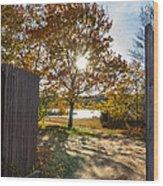 Fall Through The Gate Wood Print