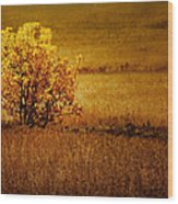 Fall Tree And Field #2 Wood Print