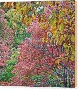Fall Tree Leaves Wood Print