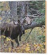 Fall Warrior Wood Print