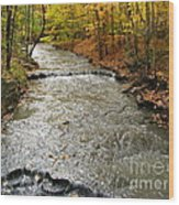Fall Waters Wood Print