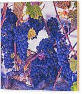Fall Wine Grapes Wood Print