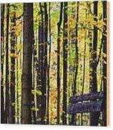 Fall Woods In Michigan Wood Print