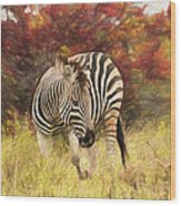 Fall Zebra Wood Print