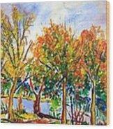 Fall2014-12 Wood Print by Vladimir Kezerashvili