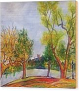 Fall2014-5 Wood Print by Vladimir Kezerashvili