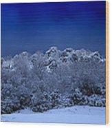 Fallen Angel Of Winter Wood Print