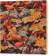 Fallen Colors Wood Print