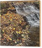 Fallen Leaves At A Waterfall Wood Print