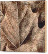 Fallen Leaves I Wood Print