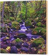 Fallen Leaves On The Rocks Wood Print