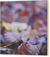 Fallen Leaves Road Wood Print by Irina Wardas