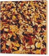 Fallen Leaves Wood Print