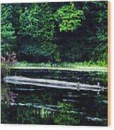 Fallen Log In A Lake Wood Print