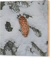 Fallen Pine Cone Wood Print