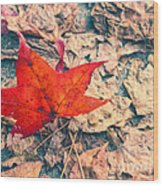 Fallen Red Leaf Wood Print