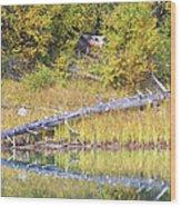 Fallen Timber  Wood Print