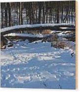 Fallen Tree Deertrails In Winter Wood Print