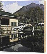 Fallen Tree In Water Pool Wood Print