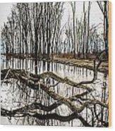Fallen Tree Reflection Wood Print