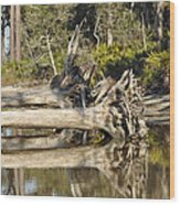 Fallen Trees Reflected In A Beach Tidal Pool Wood Print