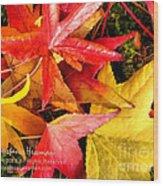 Falling Colors Fall Leaves Wood Print