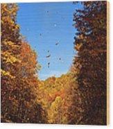 Falling Fall Leaves - Blue Ridge Parkway Wood Print by Dan Carmichael