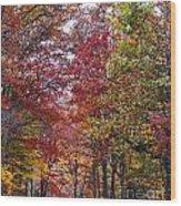 Falling For West Virginia Wood Print