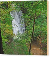 Falling Foss Waterfall In North York Moors National Park Wood Print