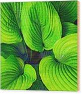 Falling Into Green Wood Print