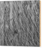 Falling Rain 01 Wood Print