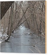 Falling Trees On A Frozen Canal Wood Print