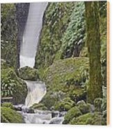 Falling Water Cuts Into Mount Tamalpais Wood Print