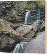 Falling Water Meets Fallen Leaves Wood Print