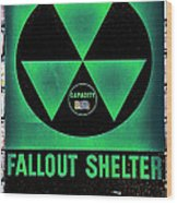 Fallout Shelter Wall 1 Wood Print
