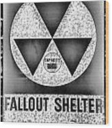 Fallout Shelter Wall 10 Wood Print